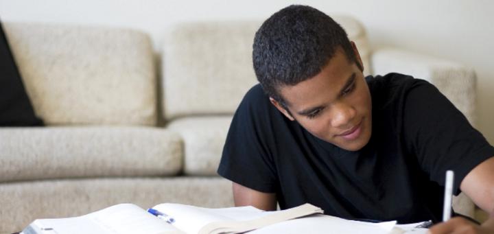 Establishing a Framework for Juvenile Justice Reform Based on Positive YouthDevelopment